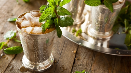 mint-julep-recipes